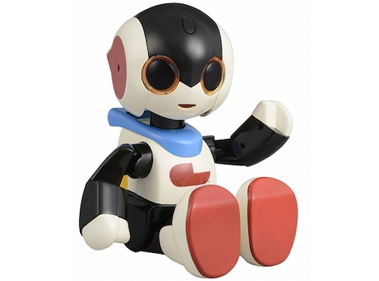 Robi Jr Robot