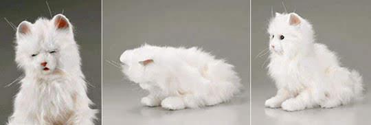 yume-neko-dream-cat-sega-2
